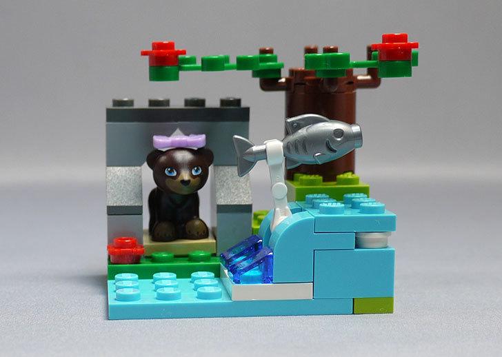 LEGO-41046-クマとマウンテンリバーを作った1.jpg