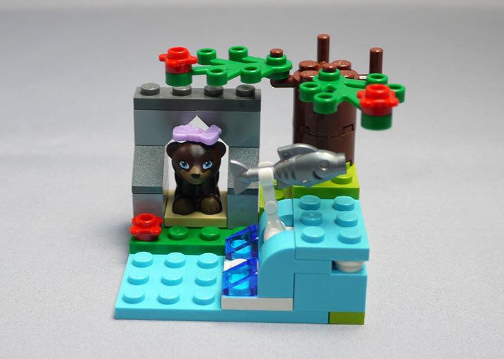 LEGO-41046-クマとマウンテンリバーを作った13.jpg
