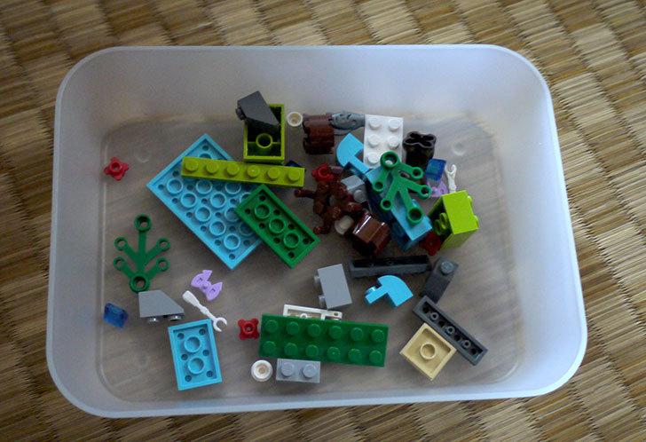 LEGO-41046-クマとマウンテンリバーを作った3.jpg
