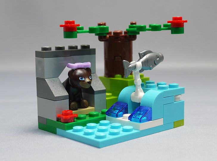LEGO-41046-クマとマウンテンリバーを作った7.jpg