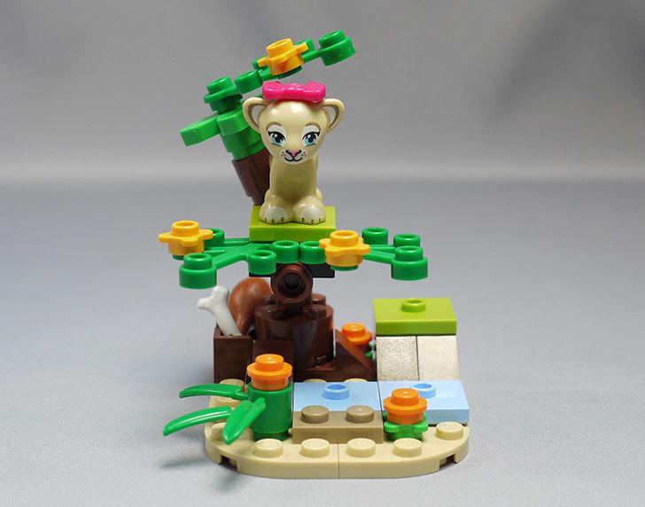 LEGO-41048-ライオンの赤ちゃんとサバンナを作った1.jpg