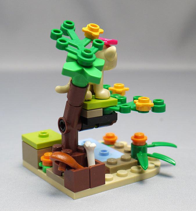 LEGO-41048-ライオンの赤ちゃんとサバンナを作った10.jpg