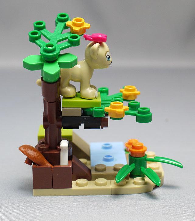LEGO-41048-ライオンの赤ちゃんとサバンナを作った11.jpg