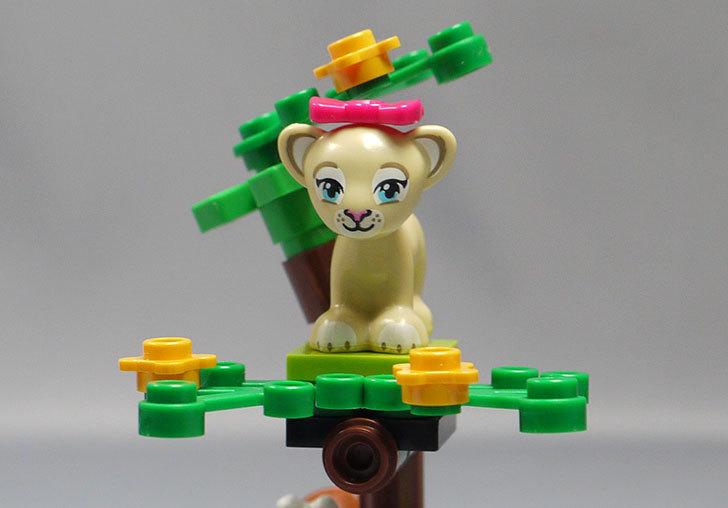 LEGO-41048-ライオンの赤ちゃんとサバンナを作った13.jpg