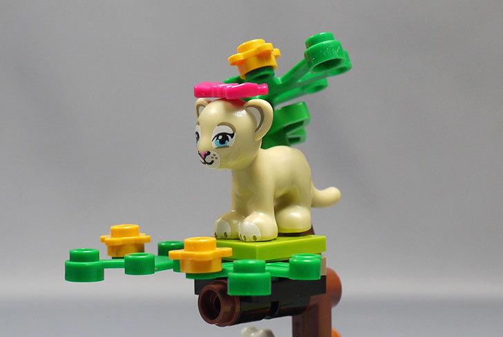 LEGO-41048-ライオンの赤ちゃんとサバンナを作った14.jpg