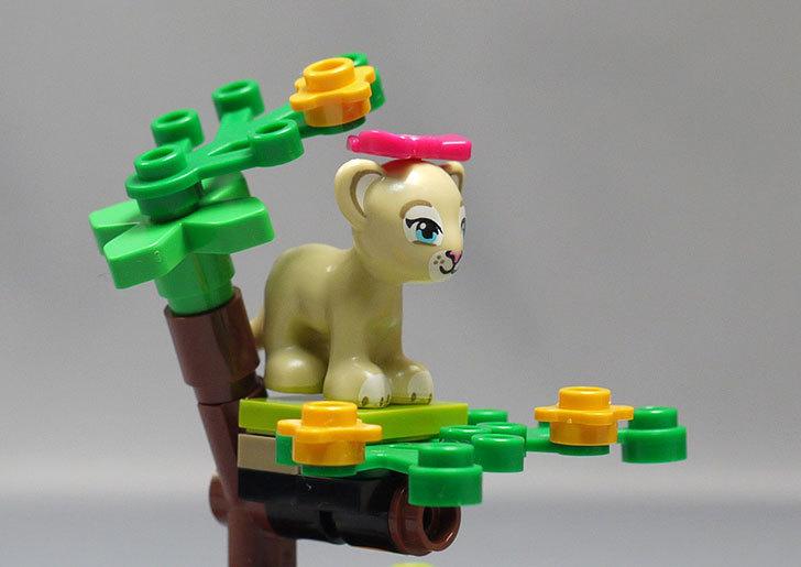 LEGO-41048-ライオンの赤ちゃんとサバンナを作った15.jpg