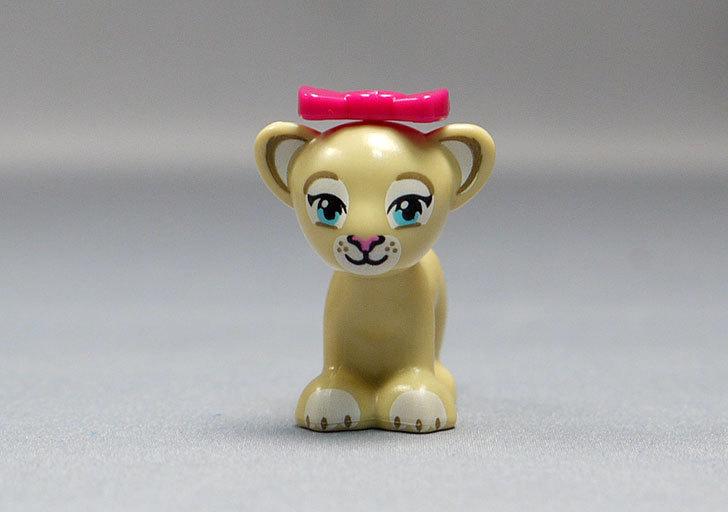 LEGO-41048-ライオンの赤ちゃんとサバンナを作った16.jpg