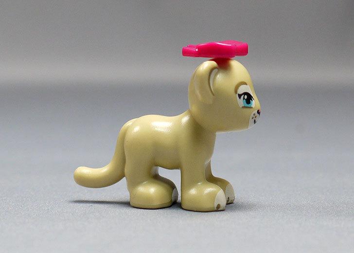 LEGO-41048-ライオンの赤ちゃんとサバンナを作った22.jpg