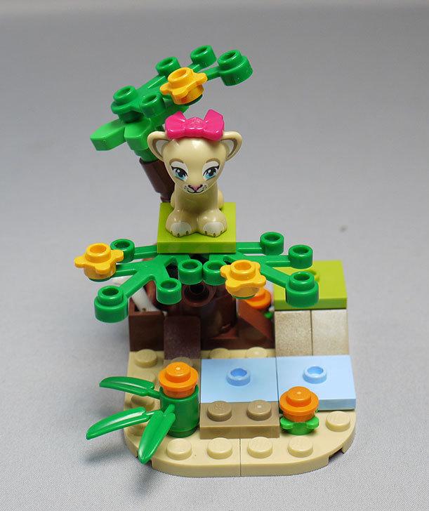 LEGO-41048-ライオンの赤ちゃんとサバンナを作った5.jpg