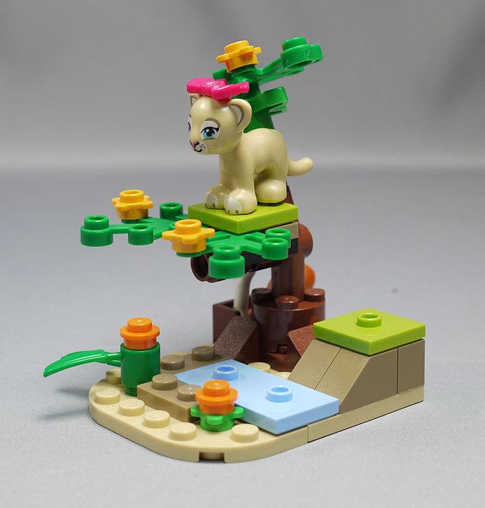 LEGO-41048-ライオンの赤ちゃんとサバンナを作った6.jpg