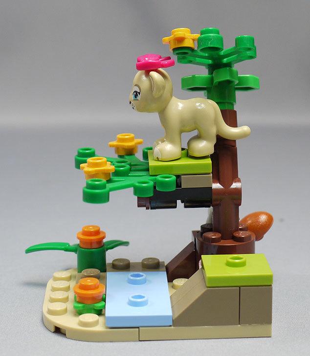 LEGO-41048-ライオンの赤ちゃんとサバンナを作った7.jpg