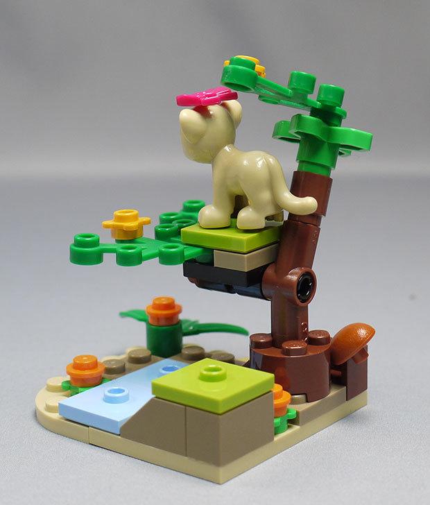 LEGO-41048-ライオンの赤ちゃんとサバンナを作った8.jpg