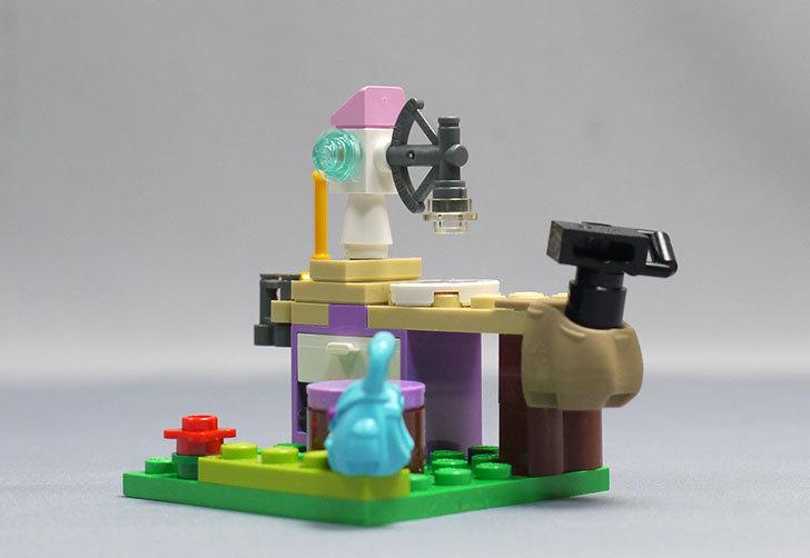 LEGO-41059-サンクチュアリジャングルツリーを作った21.jpg