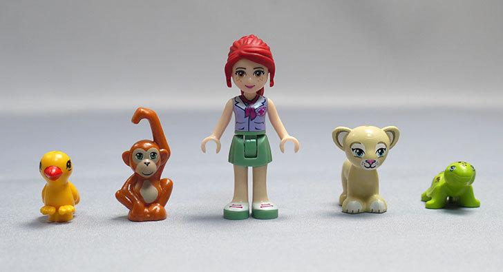 LEGO-41059-サンクチュアリジャングルツリーを作った50.jpg