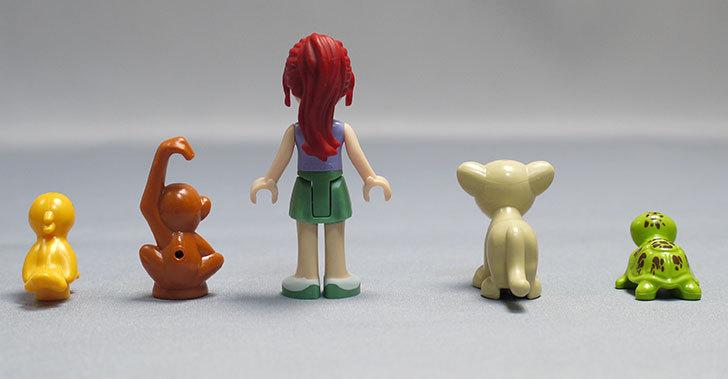 LEGO-41059-サンクチュアリジャングルツリーを作った54.jpg