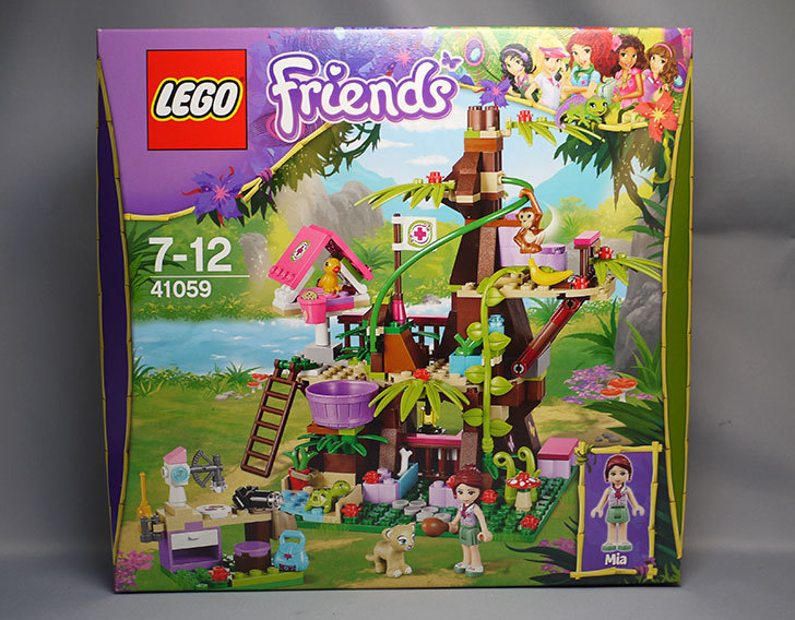 LEGO-41059を-サンクチュアリジャングルツリーが来た1.jpg