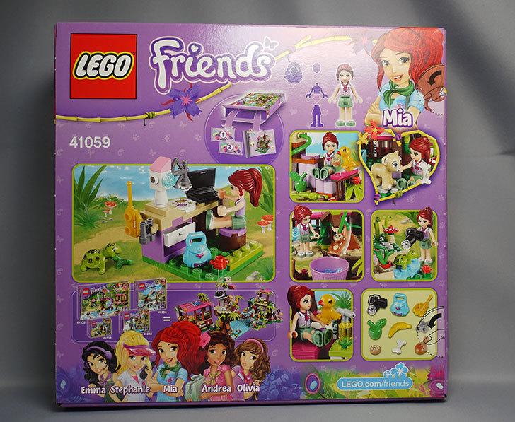LEGO-41059を-サンクチュアリジャングルツリーが来た2.jpg