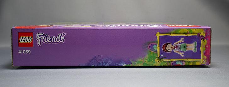LEGO-41059を-サンクチュアリジャングルツリーが来た3.jpg