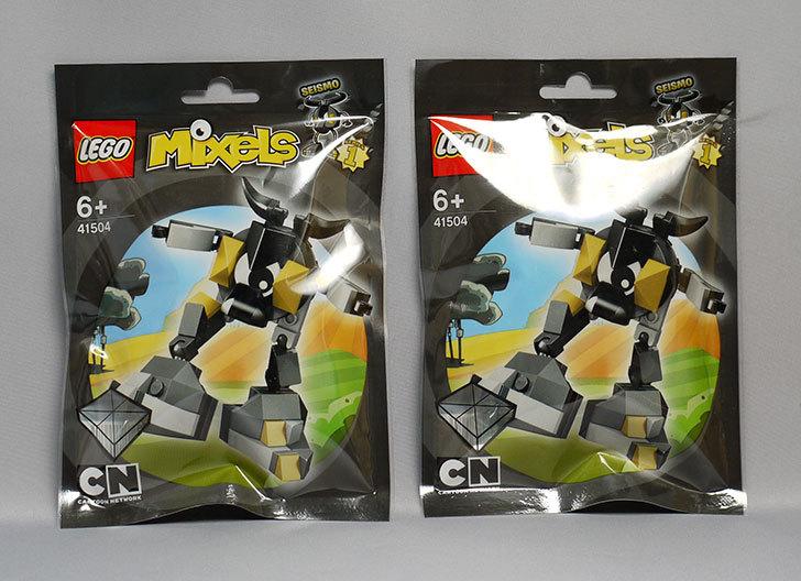 LEGO-41504-サイズモを追加で買った1.jpg