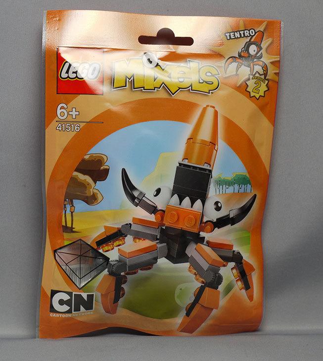 LEGO-41516-テントロが来た1.jpg