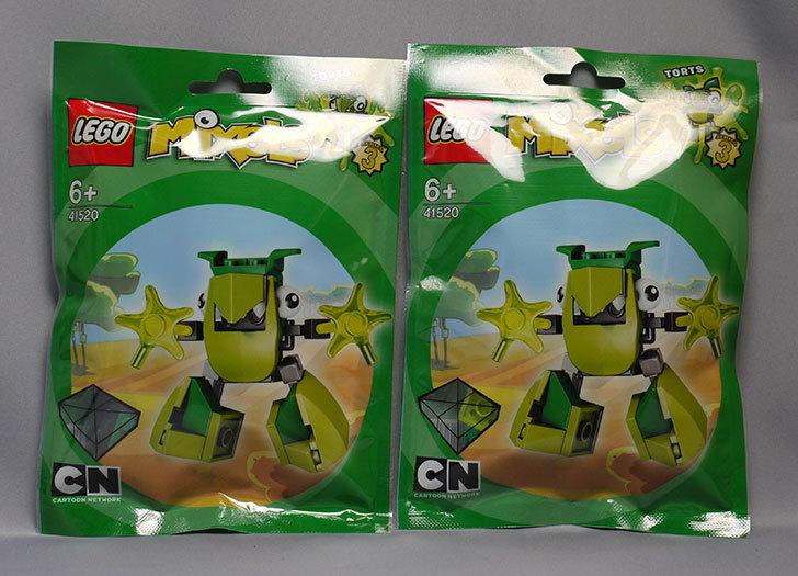 LEGO-41520-トーツが来た1.jpg