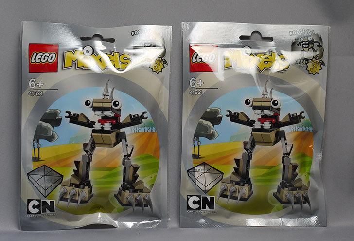 LEGO-41521-フーティが来た1.jpg