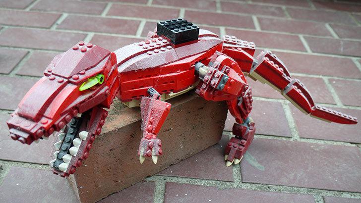 LEGO-4507-恐竜デザイナーの掃除した1.jpg