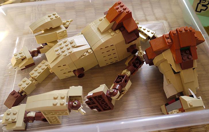 LEGO-4884-ワイルドアニマルの掃除をした10.jpg