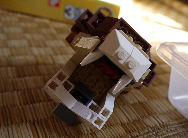 LEGO-4884-ワイルドアニマルの掃除をした11.jpg