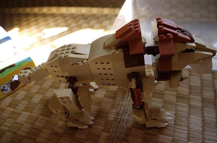 LEGO-4884-ワイルドアニマルの掃除をした14.jpg