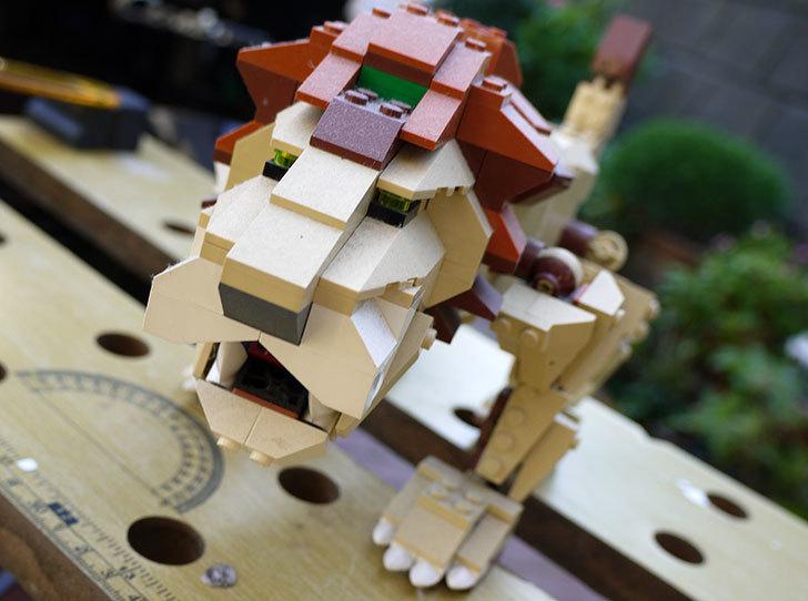 LEGO-4884-ワイルドアニマルの掃除をした2.jpg