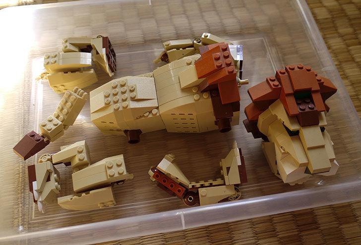 LEGO-4884-ワイルドアニマルの掃除をした6.jpg