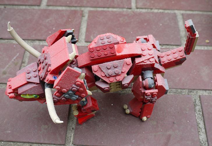 LEGO-4892-トリケラトプスの掃除をした1.jpg
