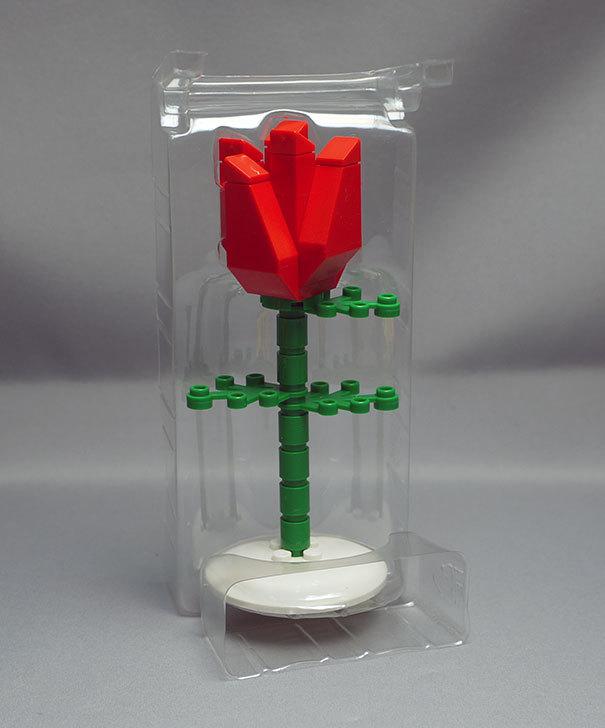 LEGO-852786-Roseをクリブリで買って来た5.jpg