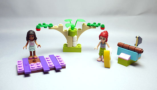 LEGO-Friends-Brickmasterを作った2-1.jpg