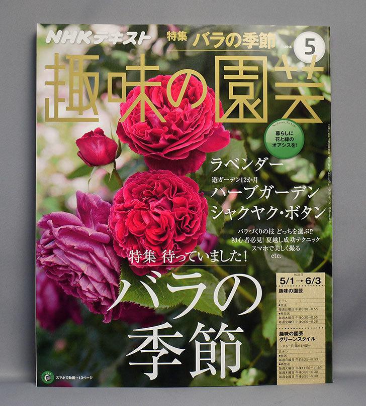 NHKテキスト-趣味の園芸-2016年-05-月号を買った.jpg
