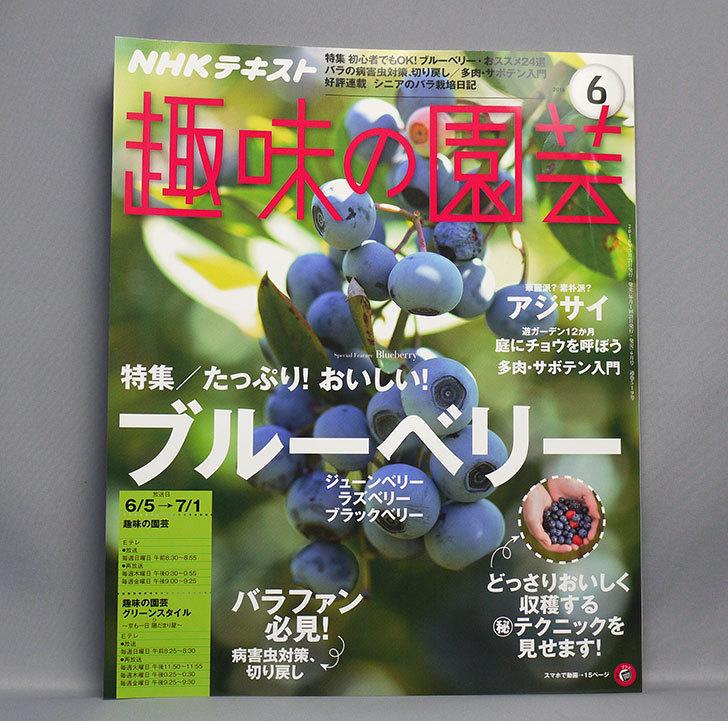 NHKテキスト-趣味の園芸-2016年-06-月号を買った1.jpg