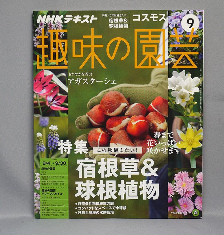 NHKテキスト-趣味の園芸-2016年-09-月号を買った1.jpg