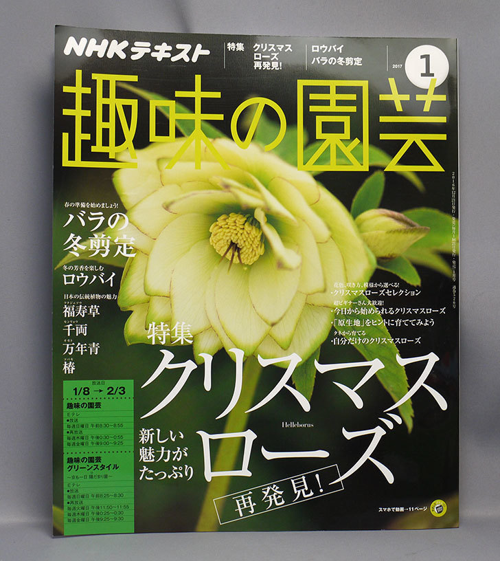 NHKテキスト-趣味の園芸-2017年-1月号を買った1.jpg
