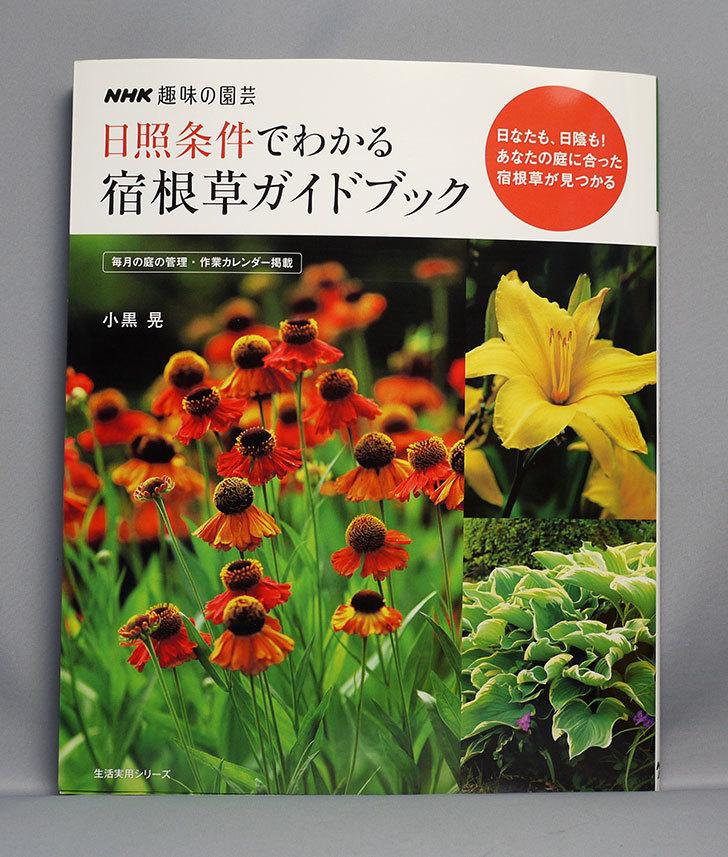 NHK趣味の園芸-日照条件でわかる-宿根草ガイドブックを買った.jpg