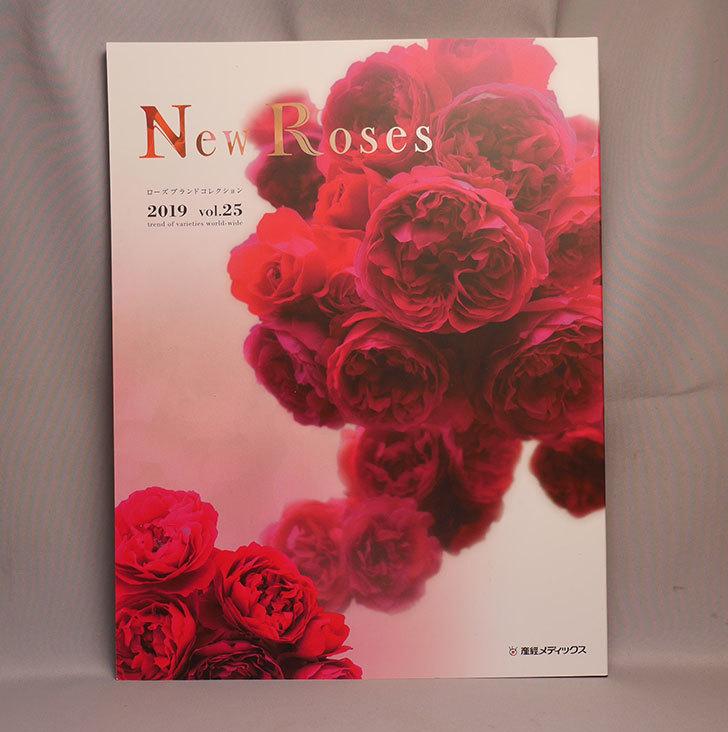 New-Roses-2019-vol.25を買った1.jpg