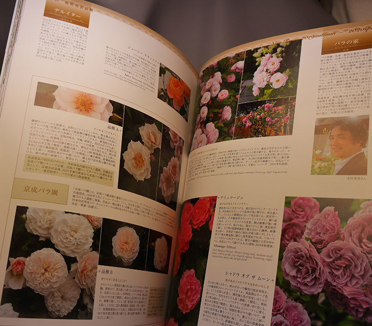 New-Roses-SPECIAL-EDITION-for-2020-vol.26を買った2.jpg