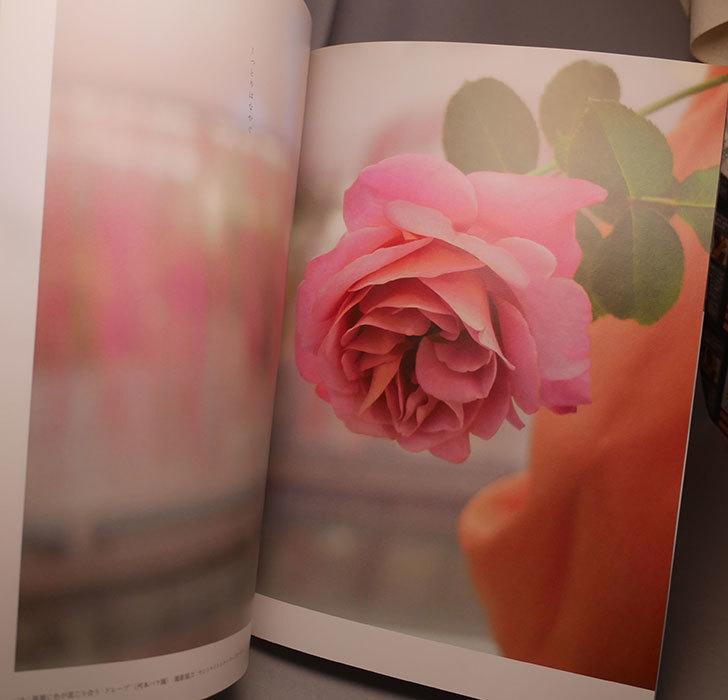 New Roses 2020 Vol.27 ローズブランドコレクションを買った002.jpg