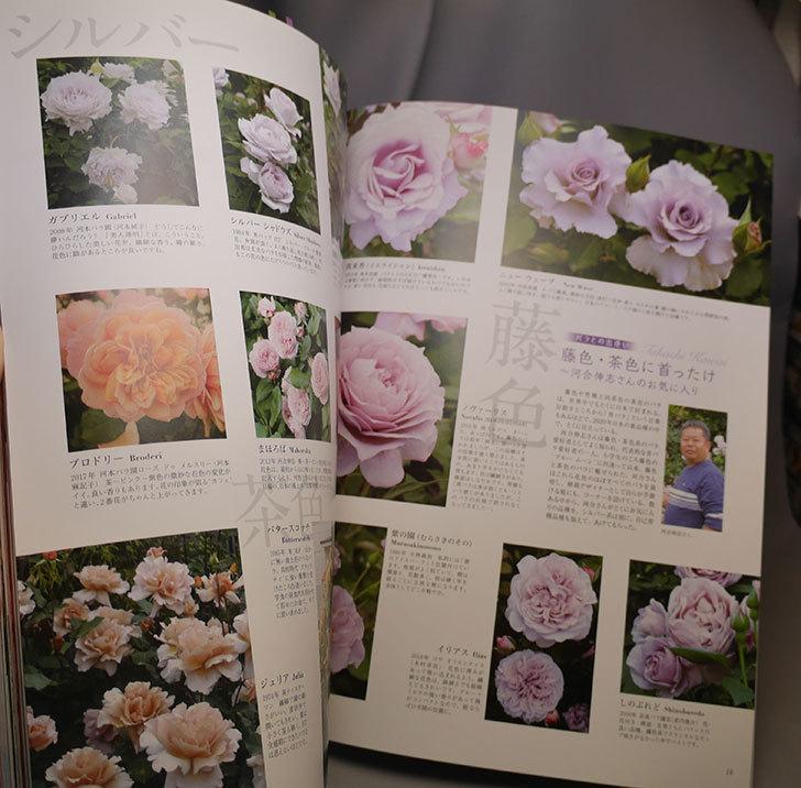 New Roses 2020 Vol.27 ローズブランドコレクションを買った004.jpg