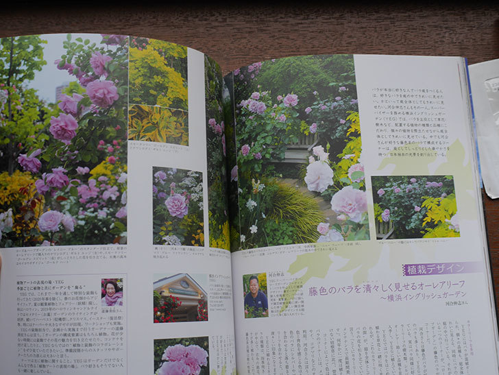 New Roses SPECIAL EDITION for 2021 Vol.28を買った-002