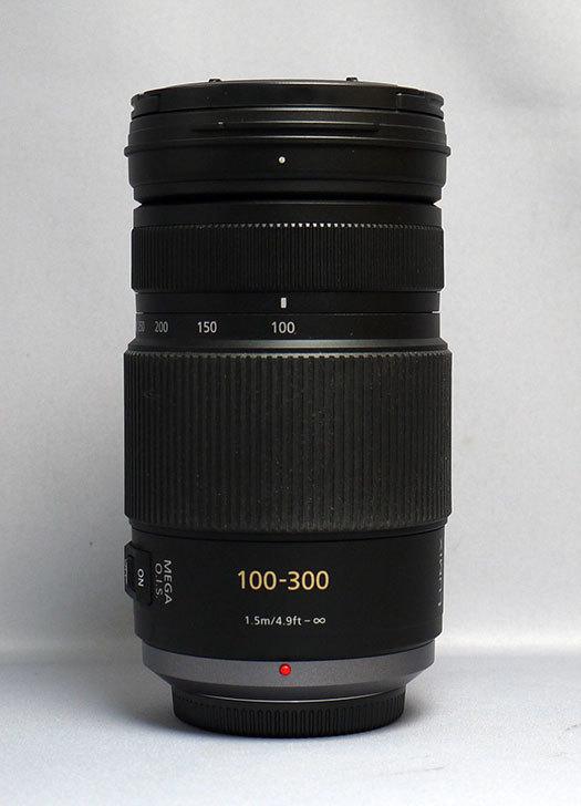 Panasonic-LUMIX-G-VARIO-100-300mm-F4.0-5.6MEGA-O.I.S.-H-FS100300買った1.jpg