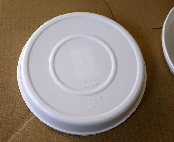 Richell-浅皿5号-ホワイト-77451をケイヨーデイツーで2枚買って来た3.jpg