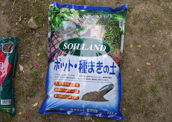 SOILLAND-ポット・種まきの土をカインズで買ってきた1.jpg