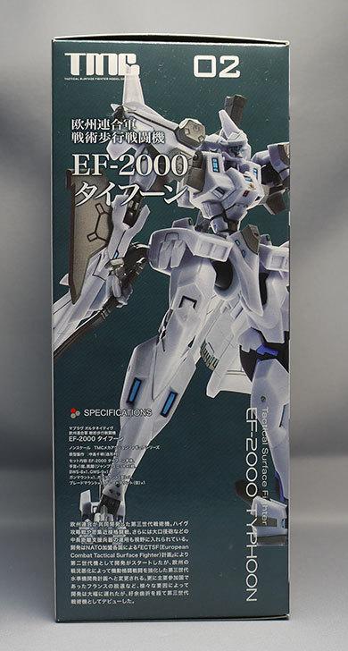 TMC-欧州連合軍-戦術歩行戦闘機-EF-2000-タイフーンが届いた5.jpg