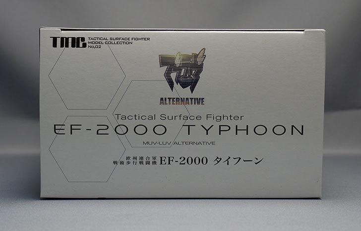 TMC-欧州連合軍-戦術歩行戦闘機-EF-2000-タイフーンが届いた6.jpg